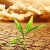 Congreso da luz verde a tratado contra el calentamiento global