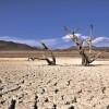Más de la mitad de los Bancos Chilenos financian productos para mitigar el Cambio Climático