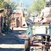 Expertos: Chile debe equilibrar medidas económicas y protección social para reducir la pobreza