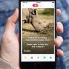 Tinder lanza campaña para salvar al último rinoceronte blanco