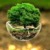 El desafío de avanzar hacia una economía baja en carbono