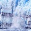 Calentamiento global perjudicará al 79% de las especies del océano austral
