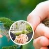 Empresas tardan 53 días más en lograr permiso ambiental para sus proyectos