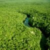 Brasil firma acuerdo para aumentar la superficie protegida en la Amazonía
