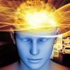 """Revelan detalles del funcionamiento del """"GPS"""" interno del cerebro"""