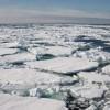 Permafrost del Ártico se descongela más rápido que nunca