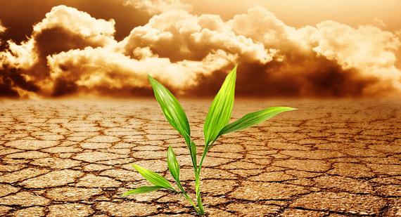 Cambio-Climatico-6-15