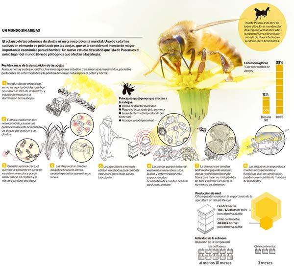 abejas-isla-0616