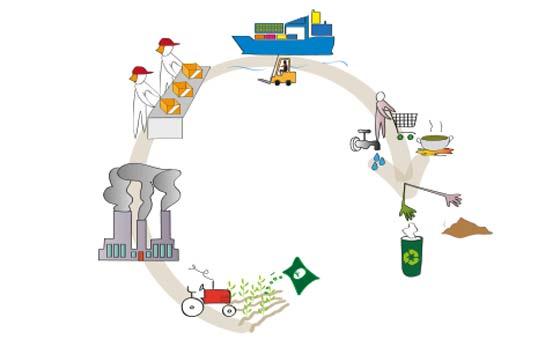 sustentable-consu-2-0616