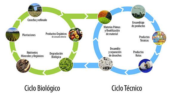 sustentable-circular-1116