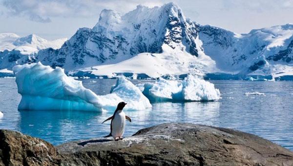 antartica-CC-0517