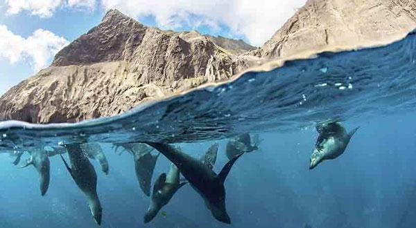 Crédito fotos: Enric Saka / National Geographic